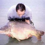 Carpe miroir 34,400 Kgs – Lac de la Forêt d'Orient – Jerôme Gigault