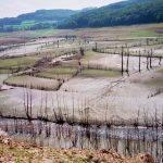 panneciere-vidange-2001-3