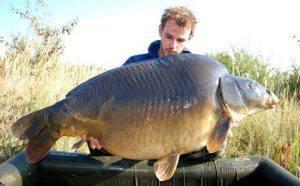 Heron-carpe-33kgs-1