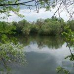 Etang de MarCo – Lac privé – Moselle (57) 2