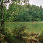 AquaDev, un étang rien que pour vous ! 3