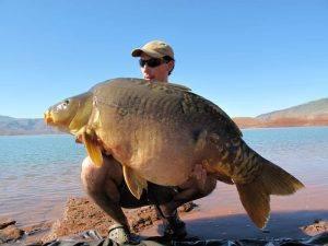 Carpe miroir 30,100 Kgs - Lac de Bin el Ouidane - Maroc - Louis Caillaux 1