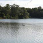 Etang de Nokilus - Lac privé - Côte-d'Or (21) 1