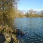 Etang de Nokilus - Lac privé - Côte-d'Or (21) 2