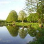 Etang Neuf - Lac privé - Orne (61) 4