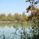 Etang du 12-7 - Lac privé - Aube (10) 2