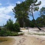 Lac de Lacanau - Grand lac public - La Gironde (33) 8
