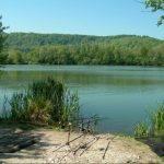 Etangs le Val Doré - Lac privé - Seine-Maritime (76) 13