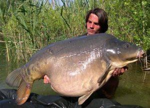 Carpe miroir 30,100 Kilos – Lac public non communiqué – Raphaël Biagini 1