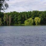 Etang de la Vigne Feuillette - Lac privé - Oise (60) 1