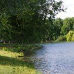 Etang de la Vigne Feuillette - Lac privé - Oise (60) 4