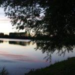 Etang de la Vigne Feuillette - Lac privé - Oise (60) 7