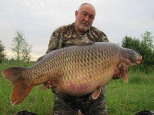 Carpe commune 40 kilos – Etang Les Teillatts – Lac privé – Roger Hanley 1