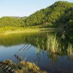 Lac de Koycegiz – Grand lac à l'étranger – Turquie 8