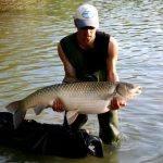 Lac des Thureaux – Lac privé – Cher (18) 1