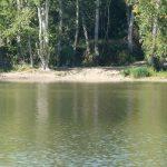 Lac des Thureaux – Lac privé – Cher (18) 7
