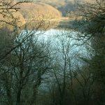 Lac de Mervent - Grand lac public - Vendée (85) 8