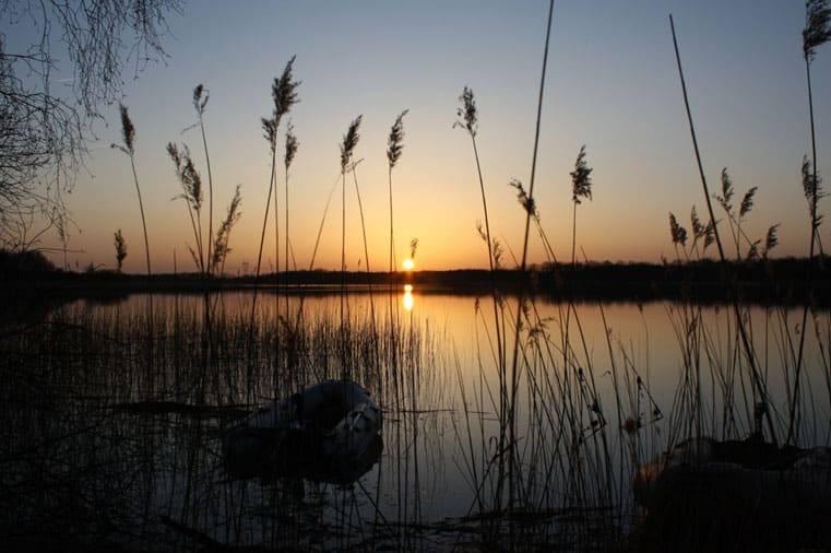 Informations complémentaires sur l'étang du Puits situé dans le Loiret (45) 1