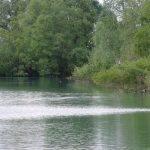 Etang le Prunet - Etangs de CarpaSens - Lac privé - Yonne (89) 10