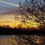 Etang le Prunet - Etangs de CarpaSens - Lac privé - Yonne (89) 3