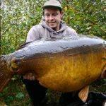 La carpe record de Belgique «The Mohikaan» capturée à son poids record : 40 kilos