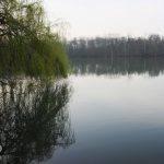 Etang des Terres Moreau - Lac privé - Eure et Loir (28) 5