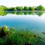 Etang Carp Fishing des Pâtures – Lac privé – Eure et Loir (28) 2
