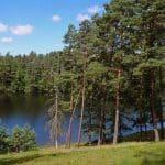 Etang de Ruffaud - Iktus - Lac Privé - Corrèze (19) 12