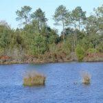 lac-de-curton-4
