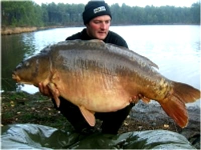 Carpe miroir 34 Kgs - Lac de curtons (Rainbow Lake) - Lac privé - Rob Hughes 1
