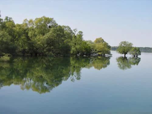 Lac du der Chanyecoq a son plus haut niveau