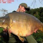 Carpe miroir 32 Kgs – Domaine de la Ribière – Lac privé – Robert Meijer