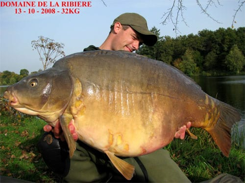 Carpe miroir 32 Kgs - Domaine de la Ribière - Lac privé - Robert Meijer 1