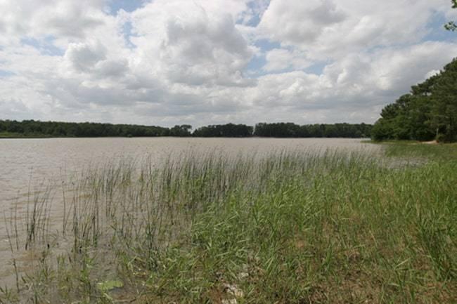 Etang de Bellebouche - Lac privé - Indre (36) 1