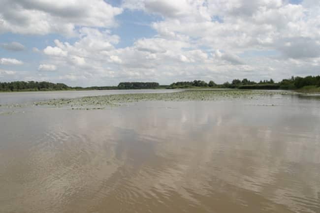 Etang de Bellebouche - Lac privé - Indre (36) 5