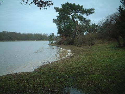 Etang de Bellebouche - Lac privé - Indre (36) 6