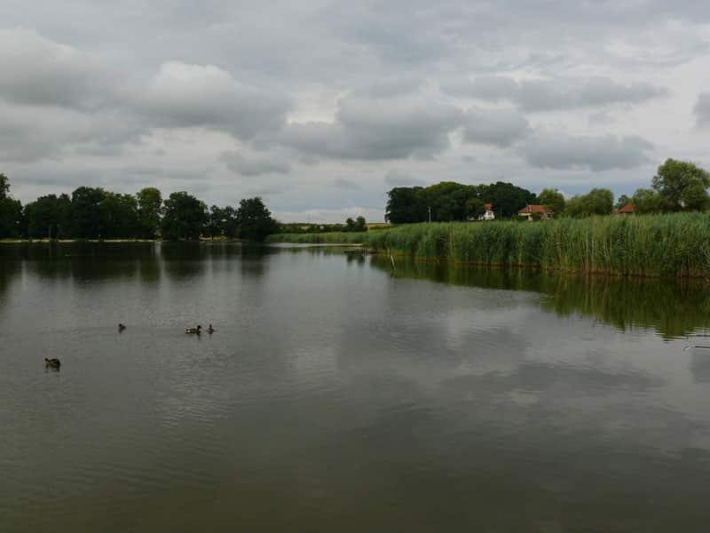 Maurepaire - Lac privé - Aube (10) 1