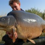 Heron-carpe-33kgs-2