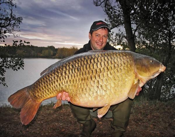 Carpe commune 37 400 kgs lac de belgique carpiste for Tarif grosse carpe
