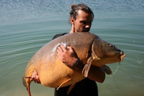 Carpe miroir Nautilus 35,500 Kgs – Raphaël Biagini 4