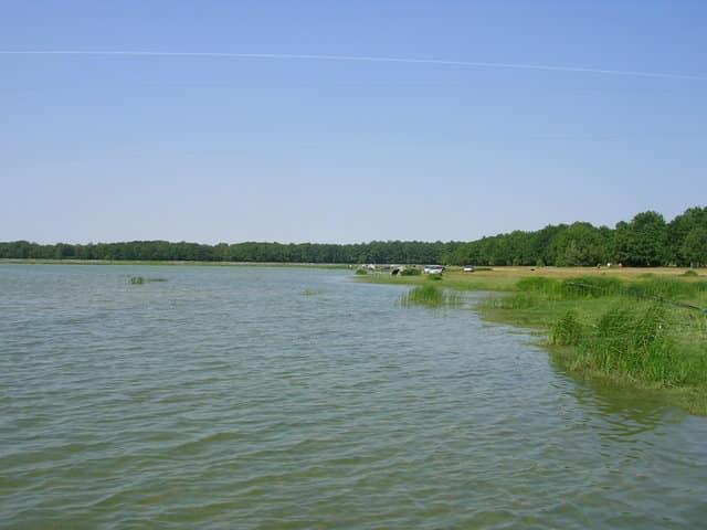 Etang de la Grand Rue - Grand lac public - Le Loiret (45) 1