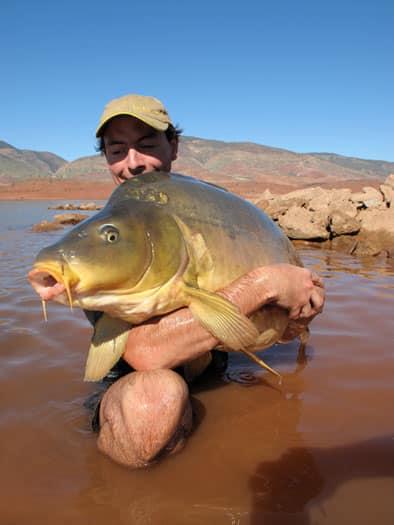 Carpe miroir 30,100 Kgs - Lac de Bin el Ouidane - Maroc - Louis Caillaux 3
