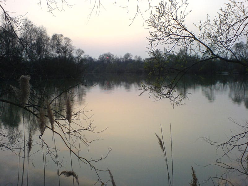 Etang de Nokillus - Lac privé - Côte-d'Or (21) 6
