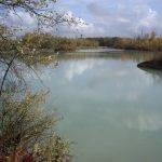 Etang du 12-7 - Lac privé - Aube (10) 8