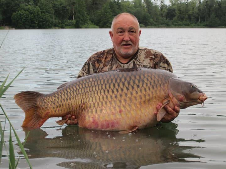 Carpe commune 40 kilos – Etang Les Teillatts – Lac privé – Roger Hanley 5