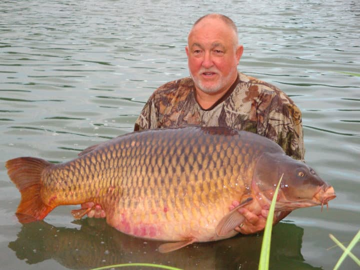 Carpe commune 40 kilos – Etang Les Teillatts – Lac privé – Roger Hanley 2