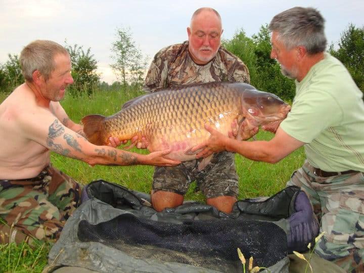 Carpe commune 40 kilos – Etang Les Teillatts – Lac privé – Roger Hanley 3