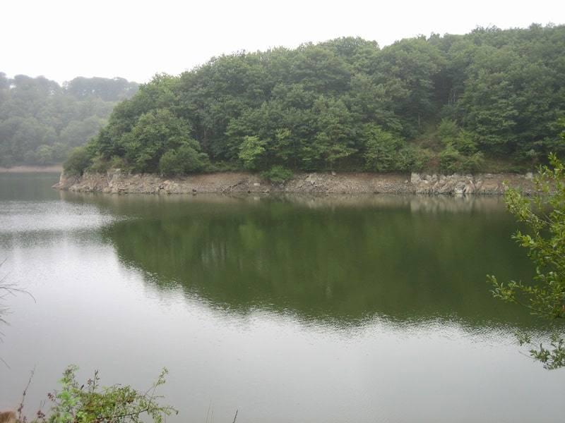 Berges du lac de Mervent