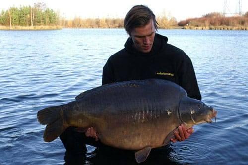 Nouveau record pour l'étang du Héron (Les étangs de l'Abbaye) : 36,8 kilos 3