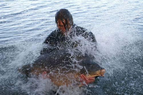 Nouveau record pour l'étang du Héron (Les étangs de l'Abbaye) : 36,8 kilos 4